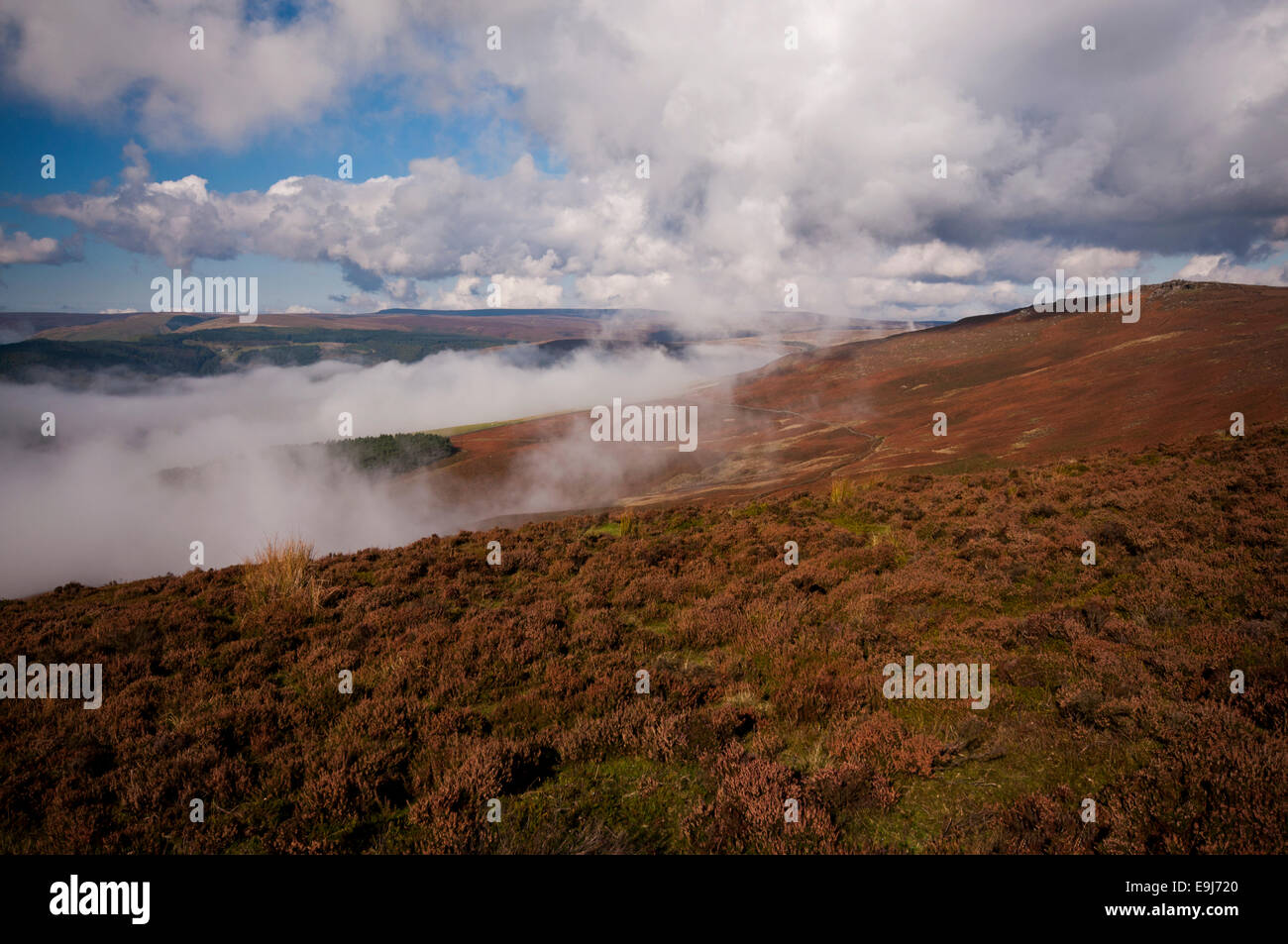 Cloud inversion in the Peak District National Park. Looking out from Whinstone Lee Tor towards Back Tor. Stock Photo