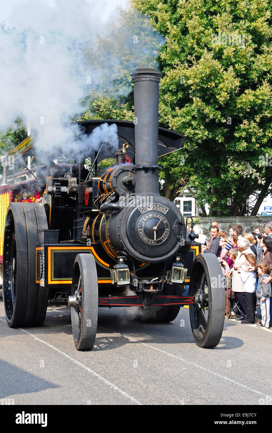 A ' Colossus ' traction engine in Camborne, Cornwall, UK, during the Trevithick day parade of steam. - Stock Image