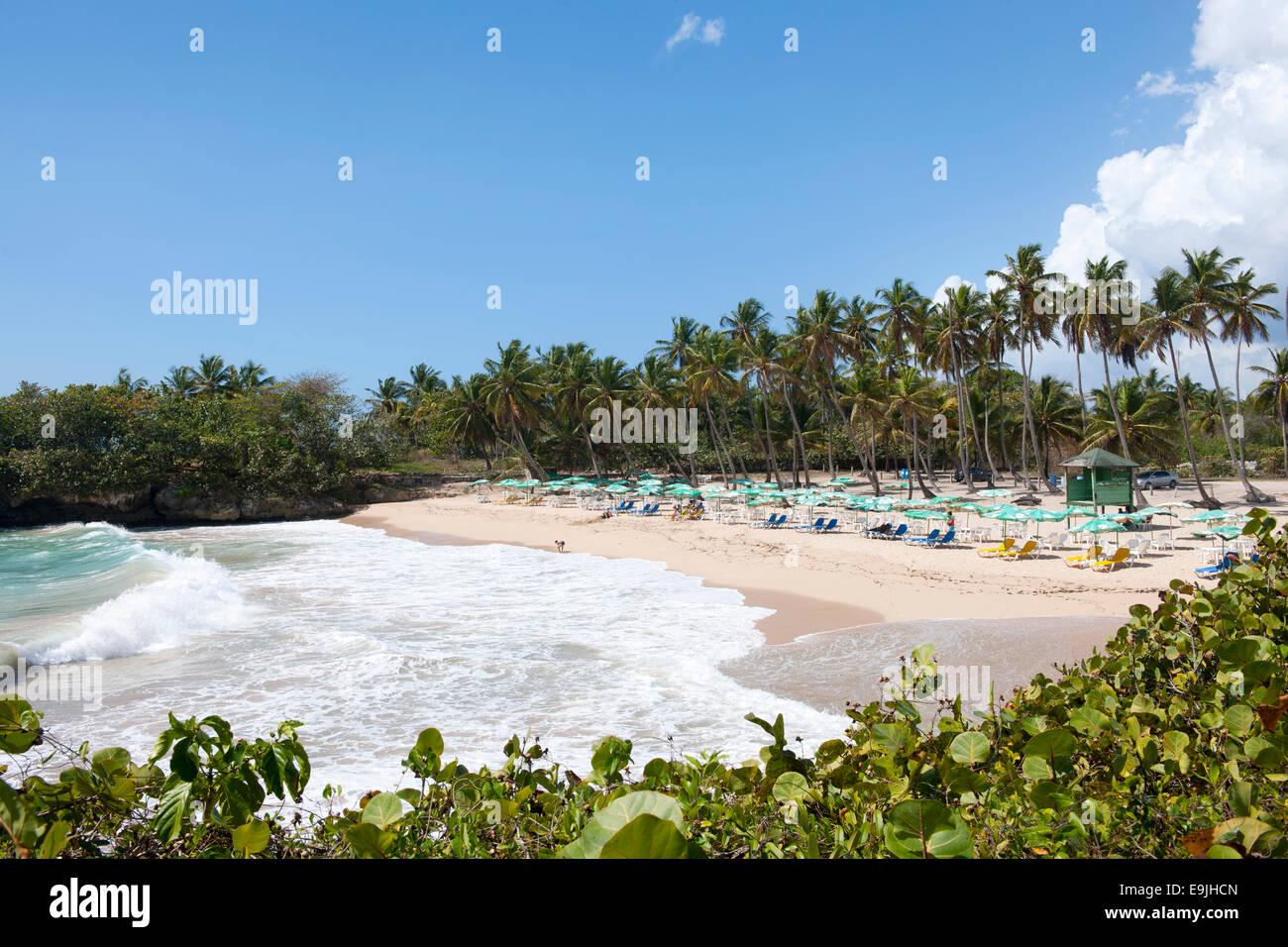 Dominikanische Republik, Osten, Juan Dolio, Playa Caribe Stock Photo