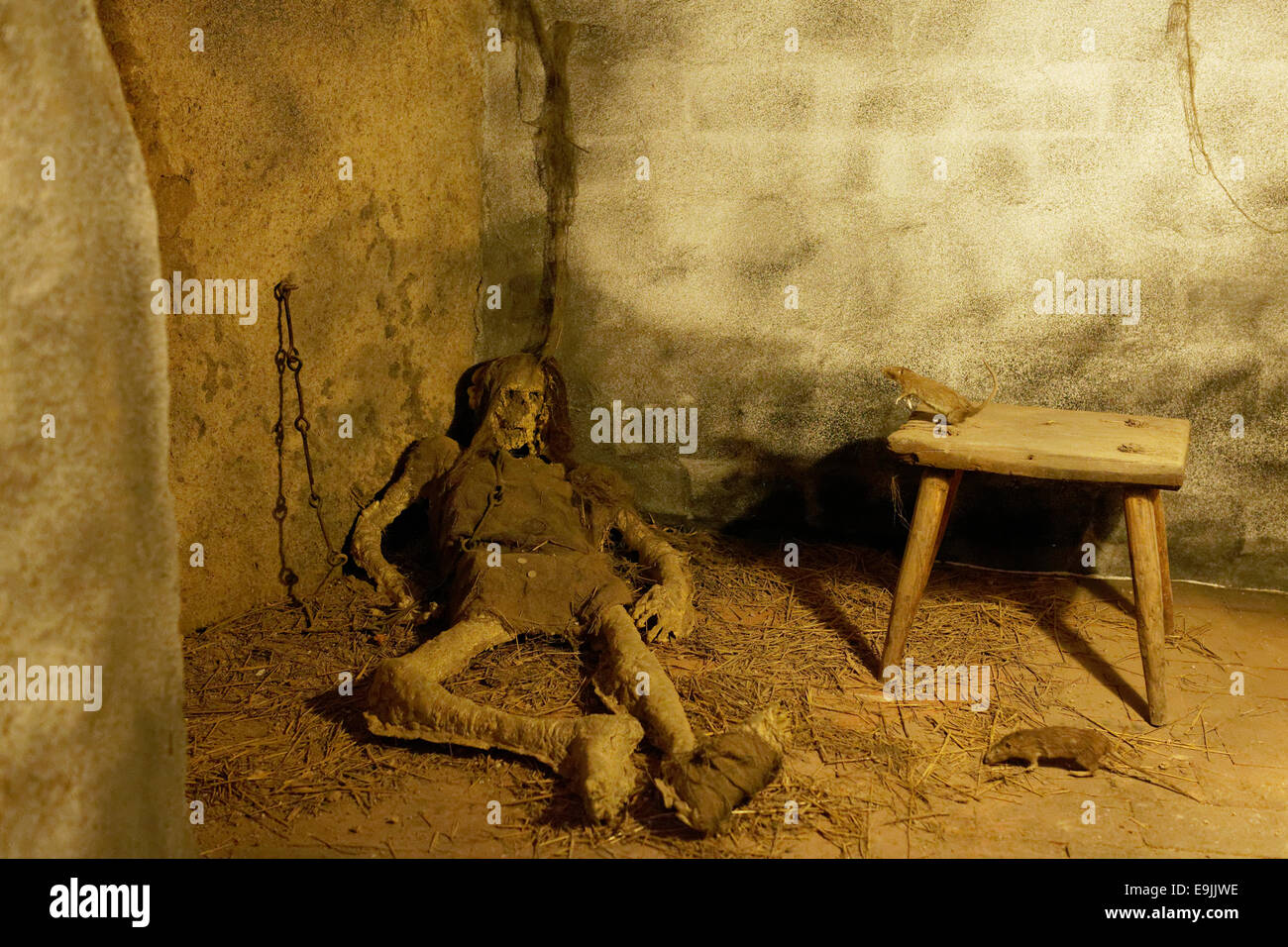 Rats and the remains of a starved prisoner in the dungeon, lifelike figures, Loket Castle, Loket, Karlovy Vary Region, - Stock Image