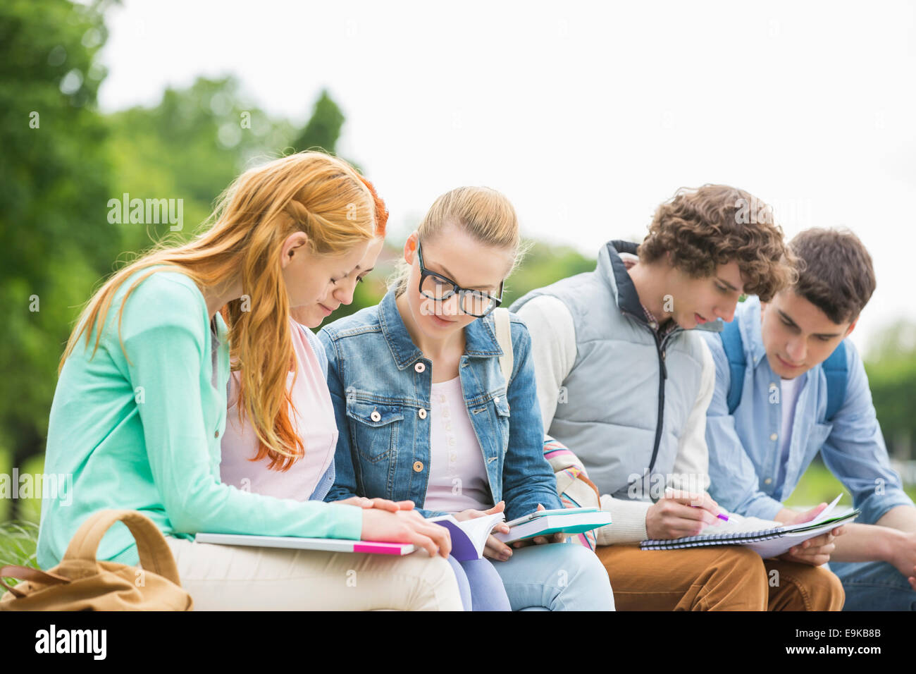 University students studying together in park - Stock Image