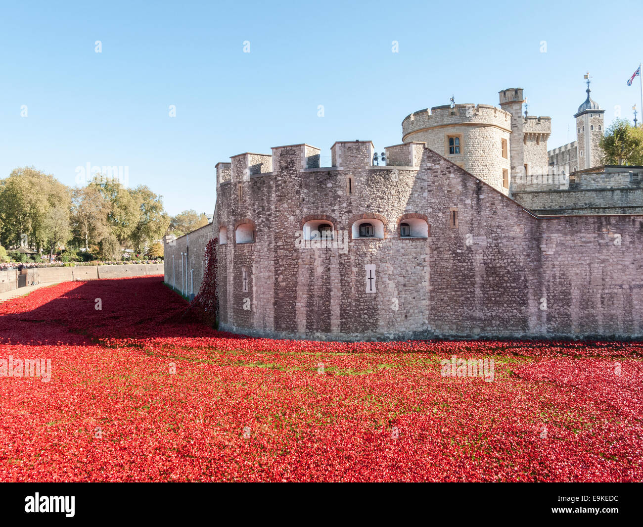Red ceramic poppies at The Tower Of London Remembers exhibition, Blood Swept Lands and Seas of Red, by Paul Cummins Stock Photo
