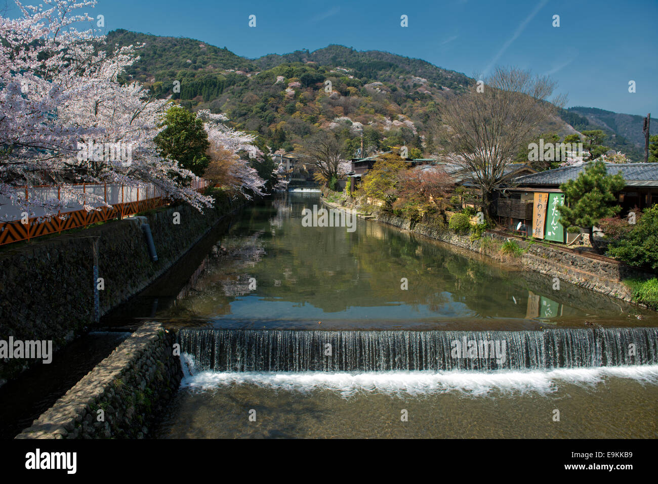 Spring in Japan - Arashiyama and Hozu river during cherry blossom in April. - Stock Image