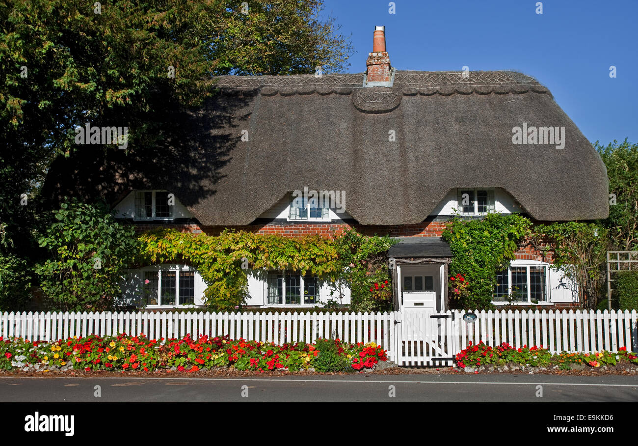 Cottage in Crawley, Hampshire, England - Stock Image
