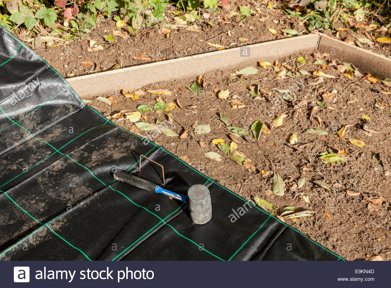 Fabric for controlling weeds - Stock Image