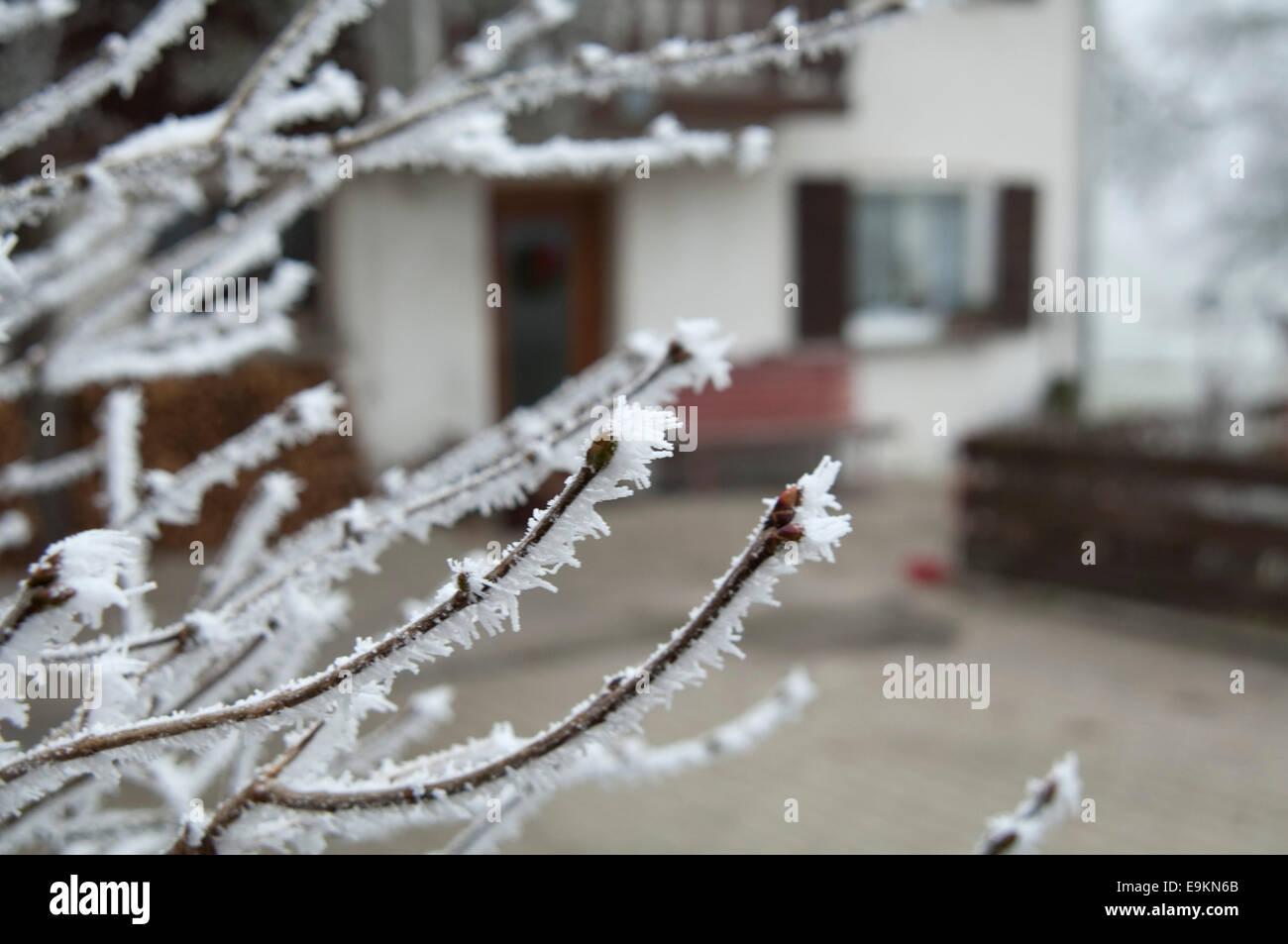 Winter! Stock Photo