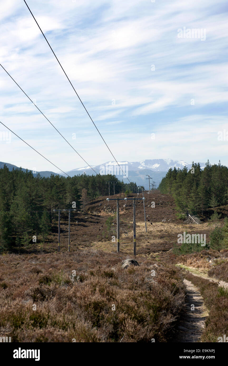 Powerlines above a footpath on the Muir of Dinnet estate with a distant view towards the Lochnagar mountain range - Stock Image