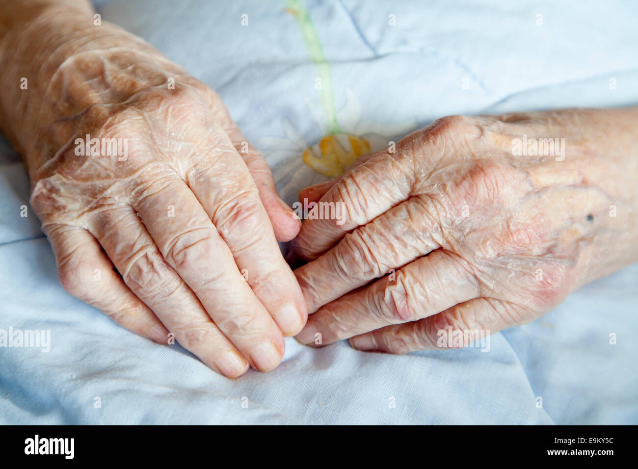 Series of photos: Hands of 92 years old lady - Stock Image