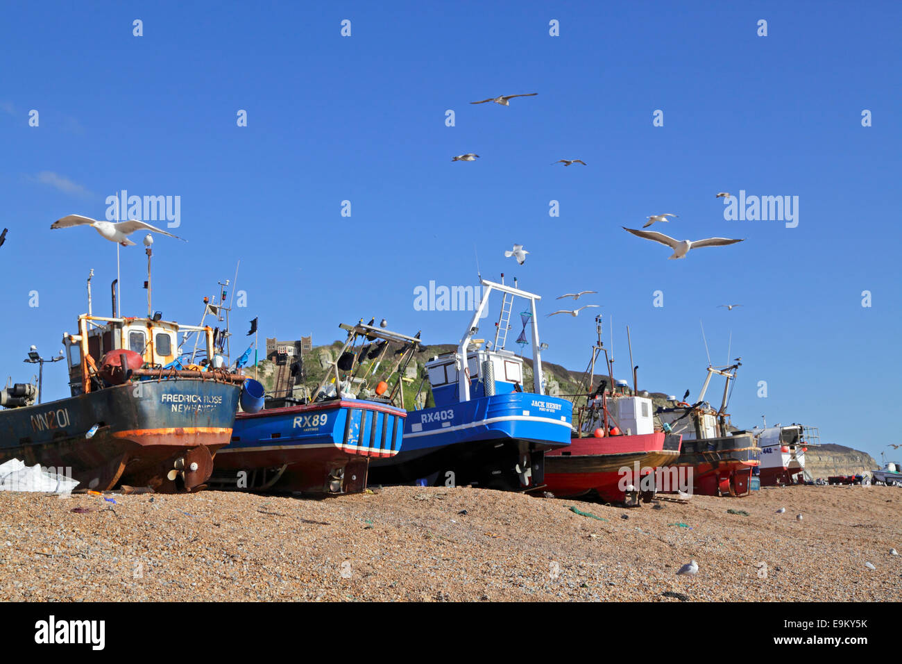 Hastings UK trawlers on the Old Town Stade beach. Hastings has the biggest beach launched fishing fleet in Britain - Stock Image