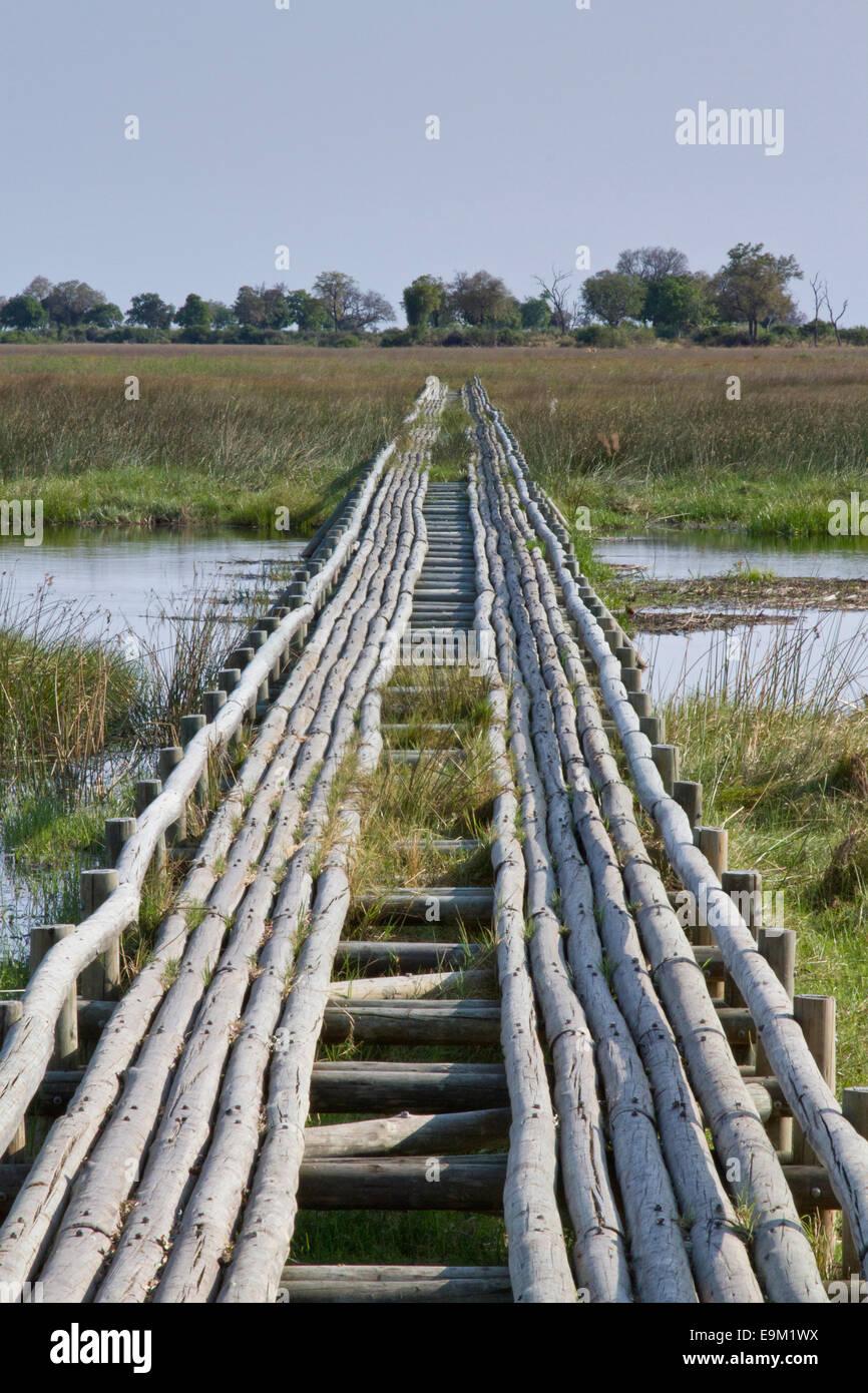 A wooden bridge in the Okavango delta leads across water to the savanna - Stock Image