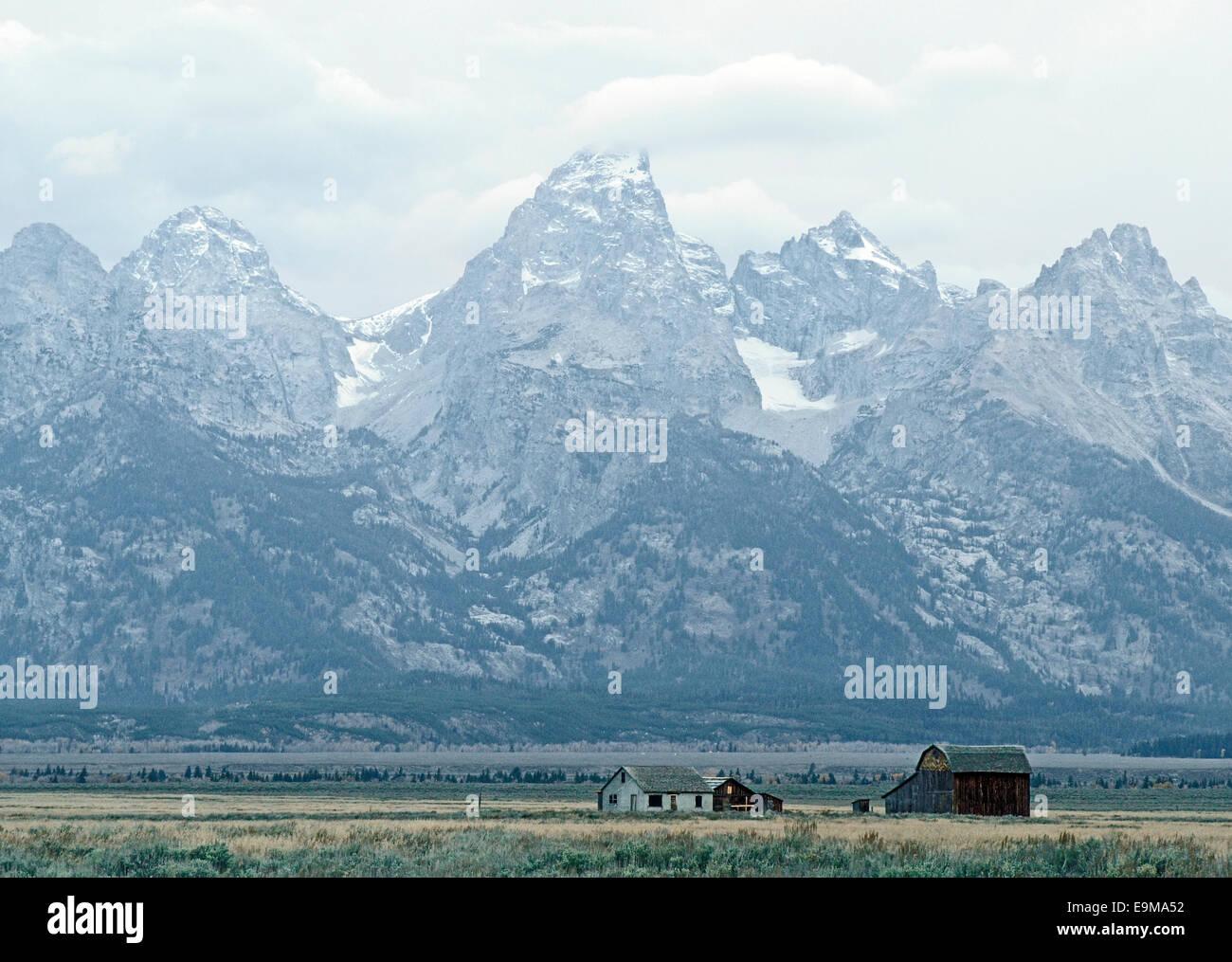 Grand Teton Mountains Towering Over Antelope Flats - Stock Image