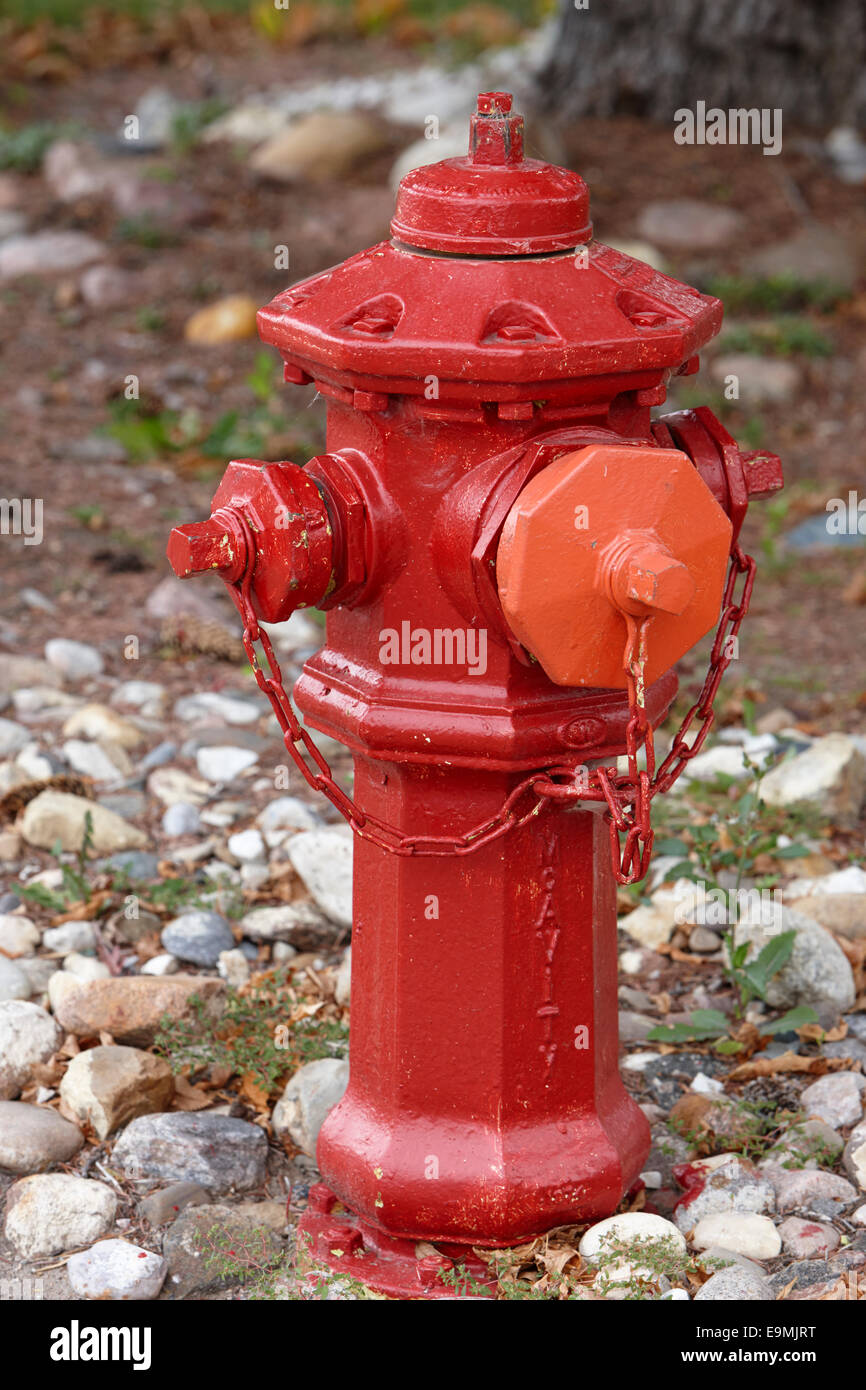 red painted mcavity fire hydrant in Saskatchewan Canada - Stock Image