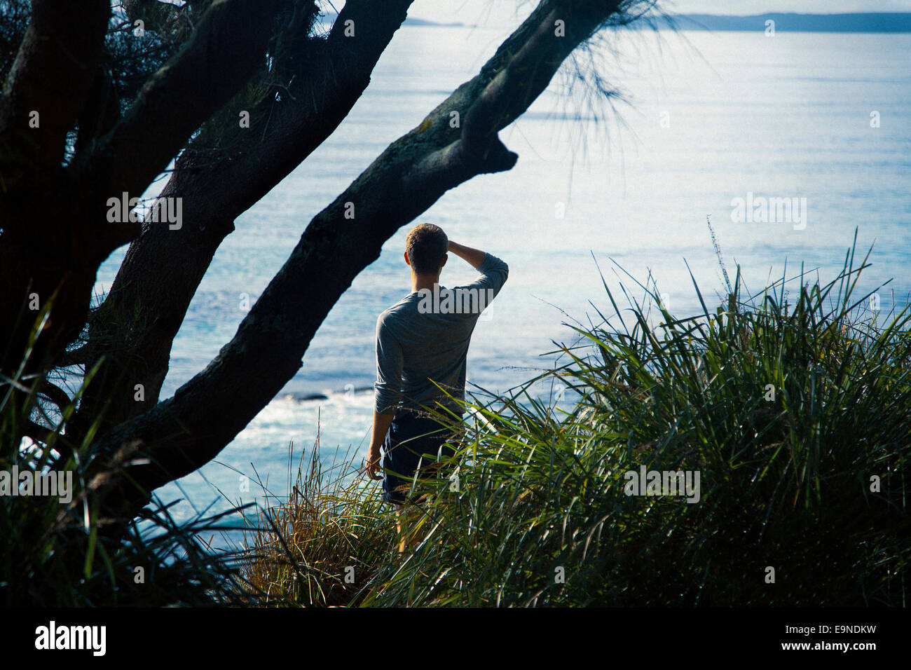 Young man standing at a cliff, Australia - Stock Image