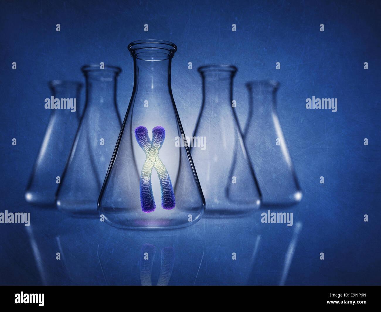 Human chromosome in laboratory flask on blue background , Genetics , detailed illustration - Stock Image