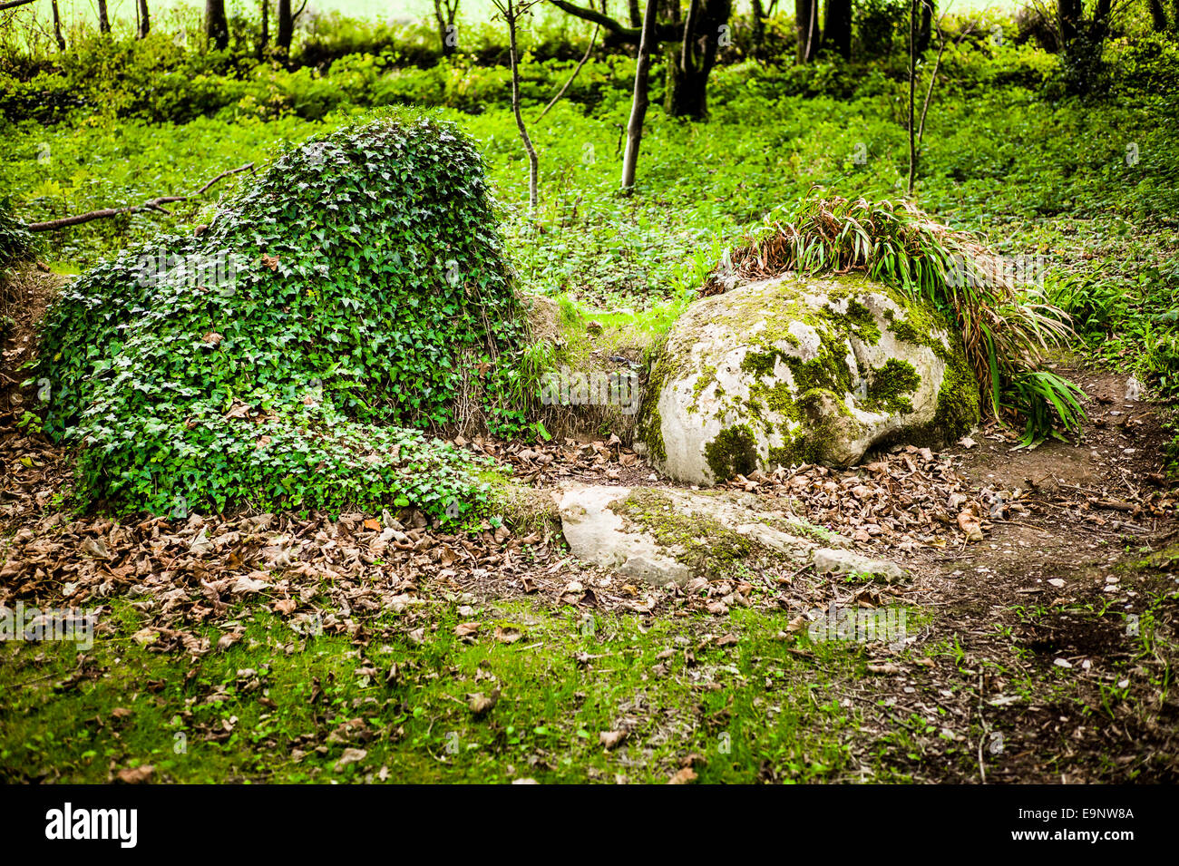 The ivy-clad and moss-covered  'Mud Maid' or Garden Goddess in a woodland setting in Heligan Gardens Cornwall - Stock Image