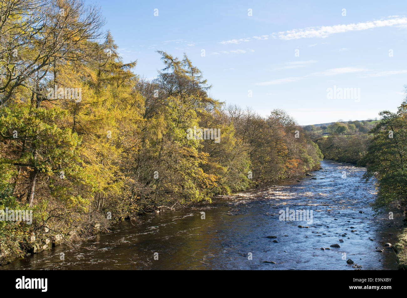 The river Tees at Middleton in Teesdale in autumn, north east England, UK - Stock Image