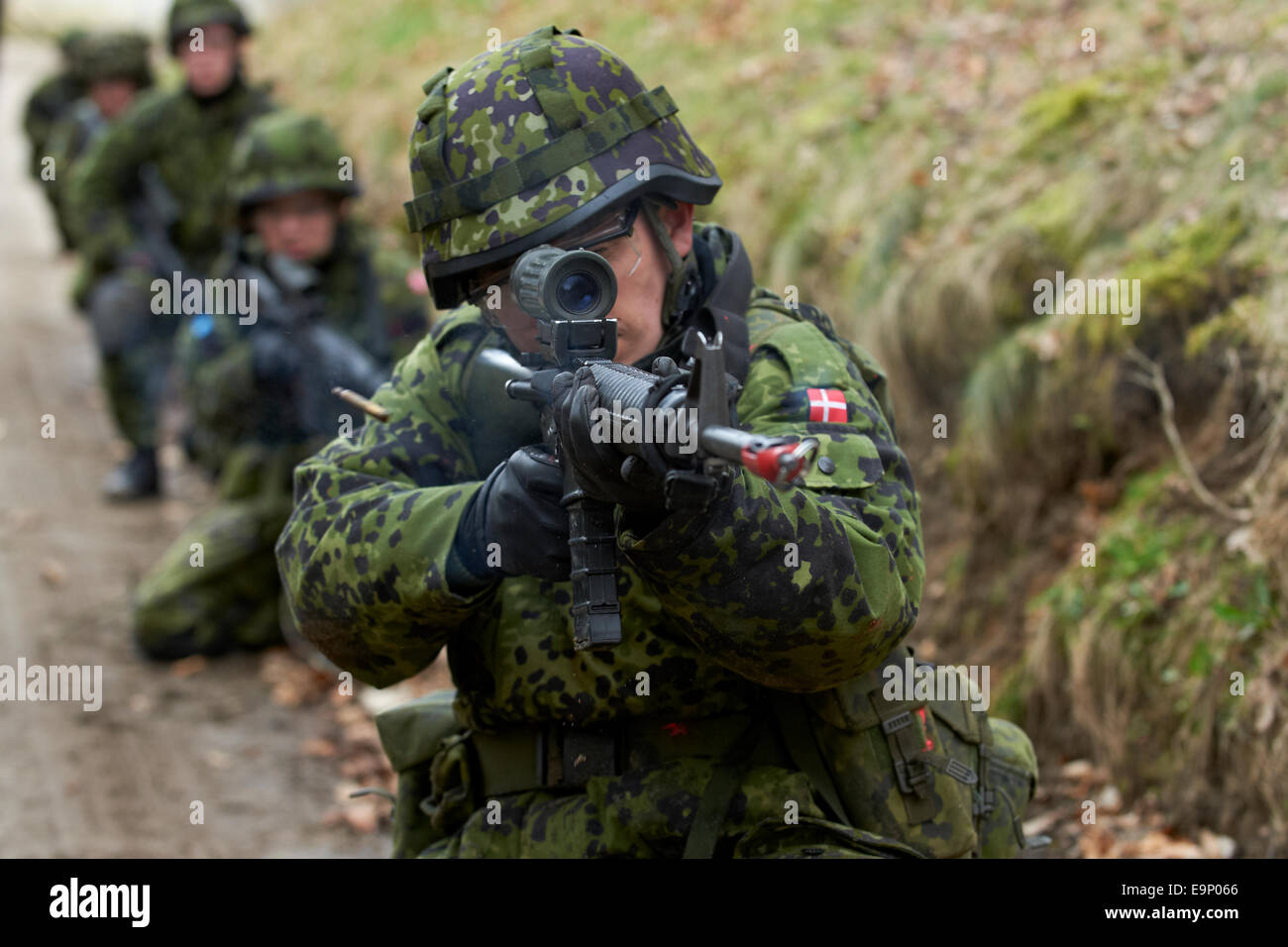 During combat training exercises, a Danish soldier fires blanks with his automatic rifle M/95 (Colt (Diemaco) C7A1. - Stock Image