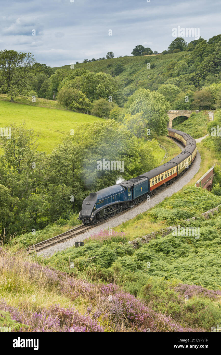 'Sir Nigel Gresley' steam train and carriages, travelling through moorland from Pickering to Goathland, - Stock Image