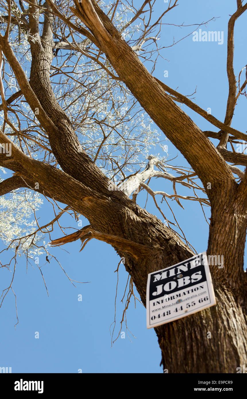 Mine Jobs advertising notice on tree, Near Charleville