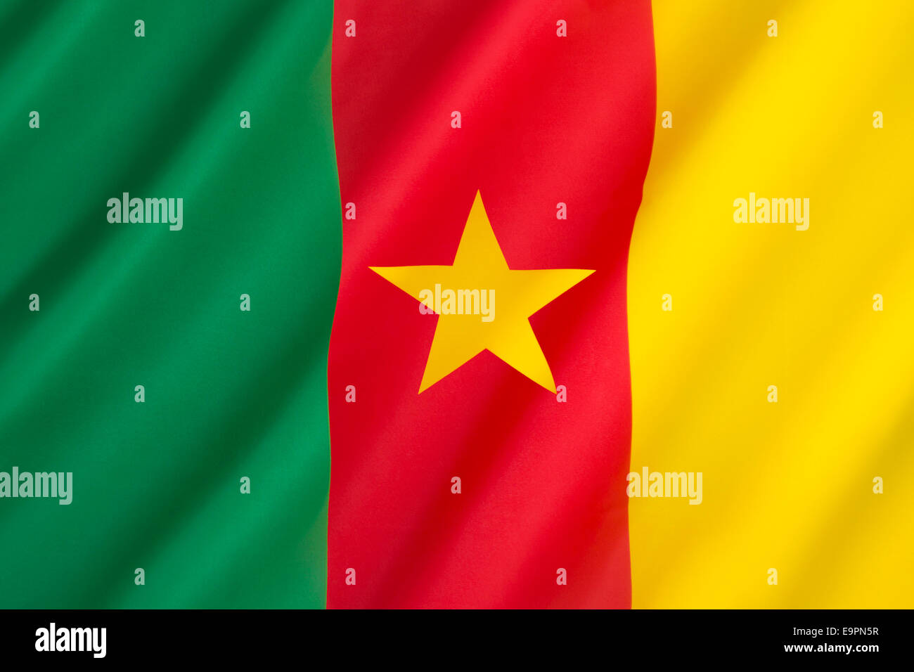 Flag of Cameroon - Stock Image