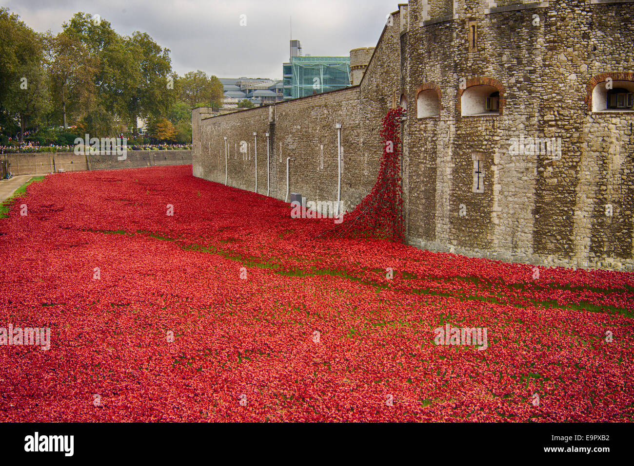 "North side of the tower of London showing the poppy installation 'Blood Swept Lands and Seas of Red"" Stock Photo"