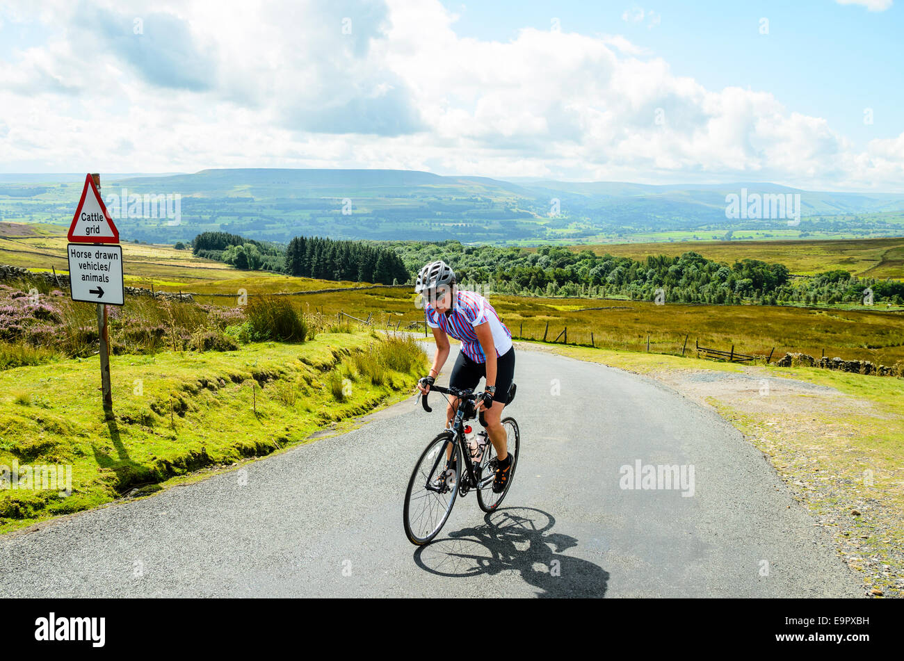 Female cyclist climbing Redmire Moor in the Yorkshire Dales - Stock Image