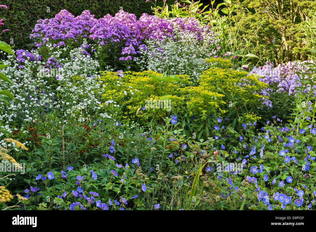Great Dixter, East Sussex - the garden created and made famous by Christopher Lloyd. The Barn Garden - Stock Image