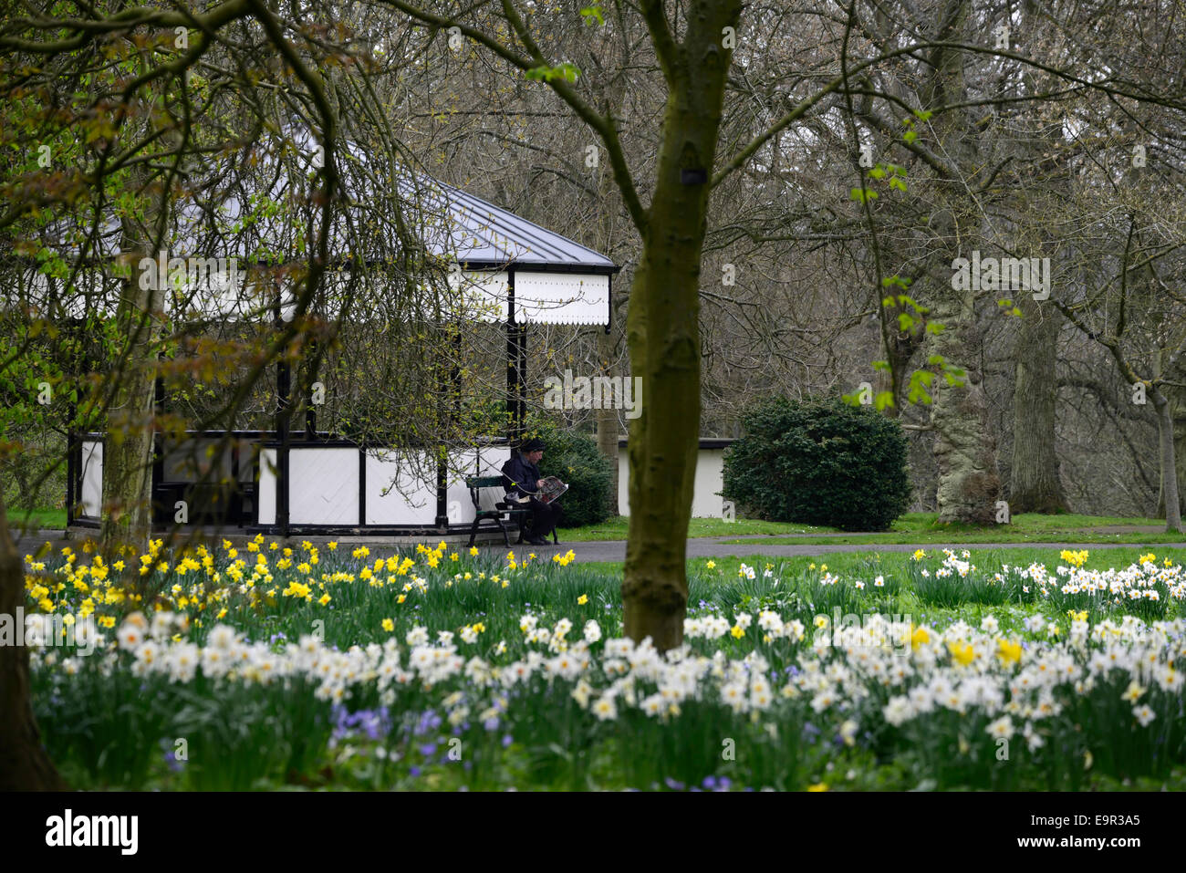 man read reading paper outdoors bandstand botanic gardens spring flowers flowering bloom RM Floral - Stock Image