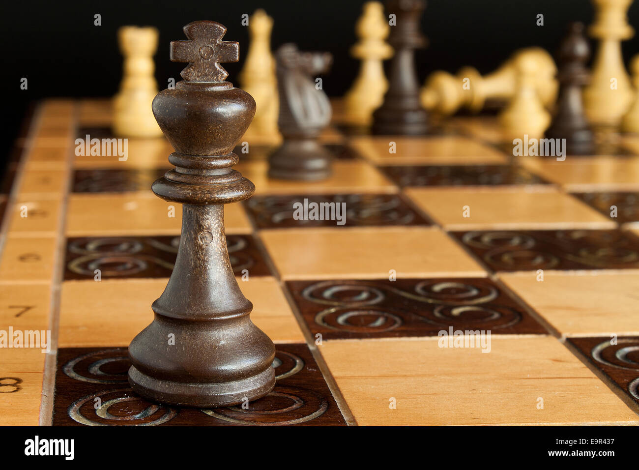 Photographed on a chess board - Stock Image