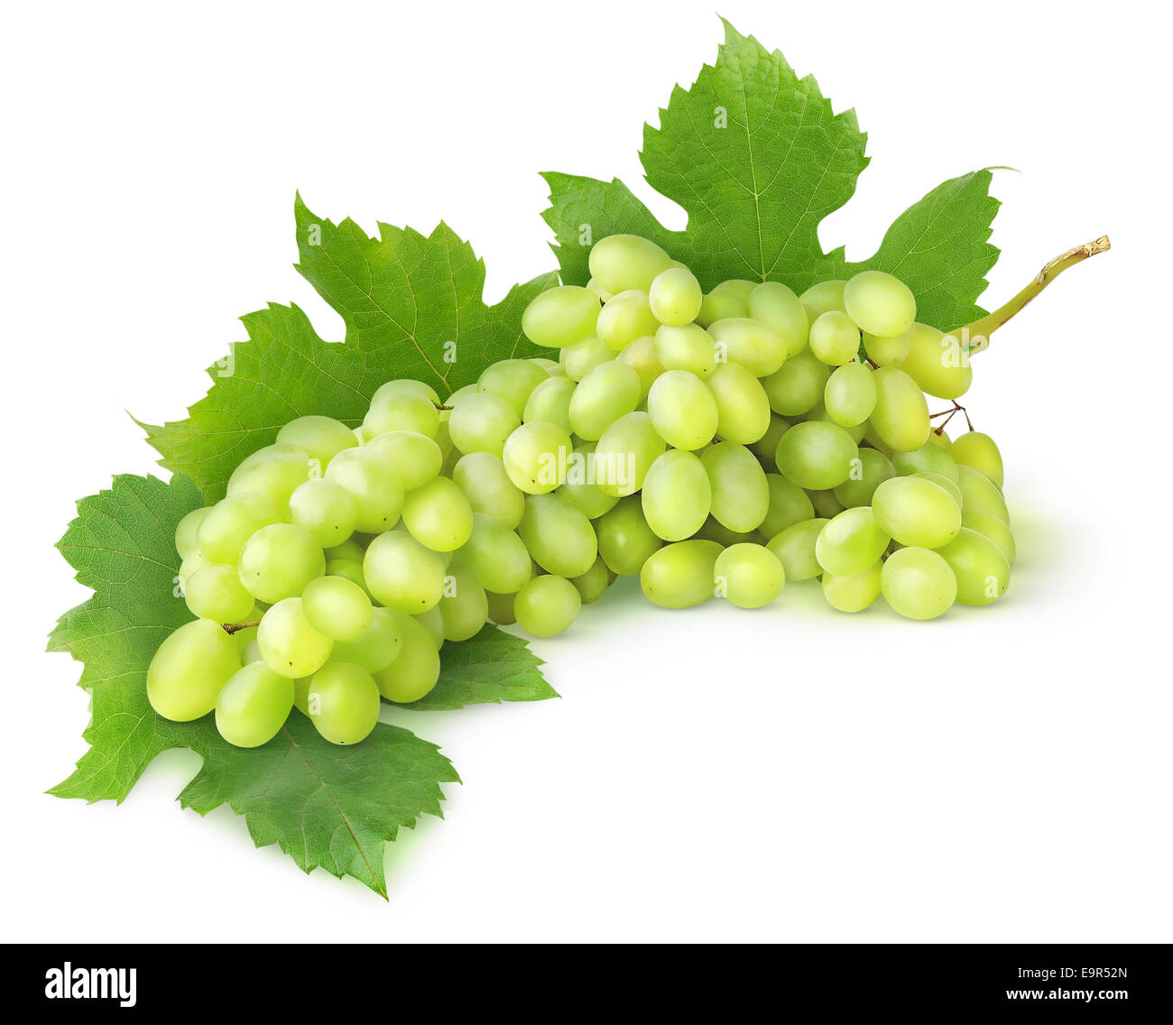 Green grape with leaves isolated on white - Stock Image