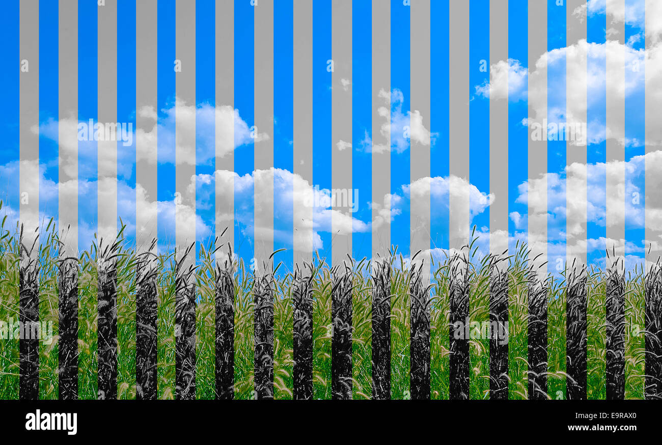The Vertical Montaged Photo in Color and Two Tone Background. - Stock Image