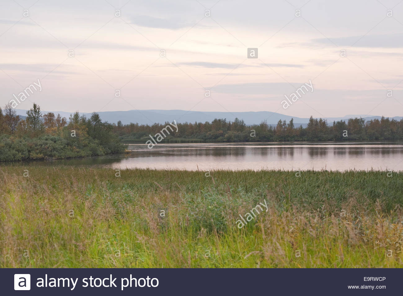 An evening in Finnish Lapland - Stock Image