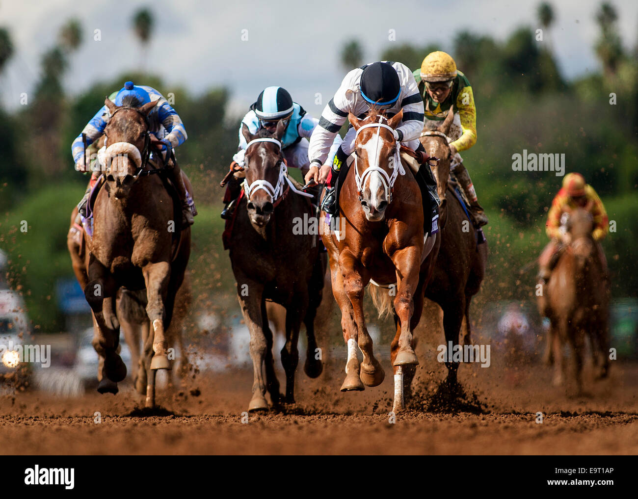 Arcadia, CA, USA. 2nd Nov, 2014. November 01 2014: Take Charge Brandi, ridden by Victor Espinoza and trained by Stock Photo