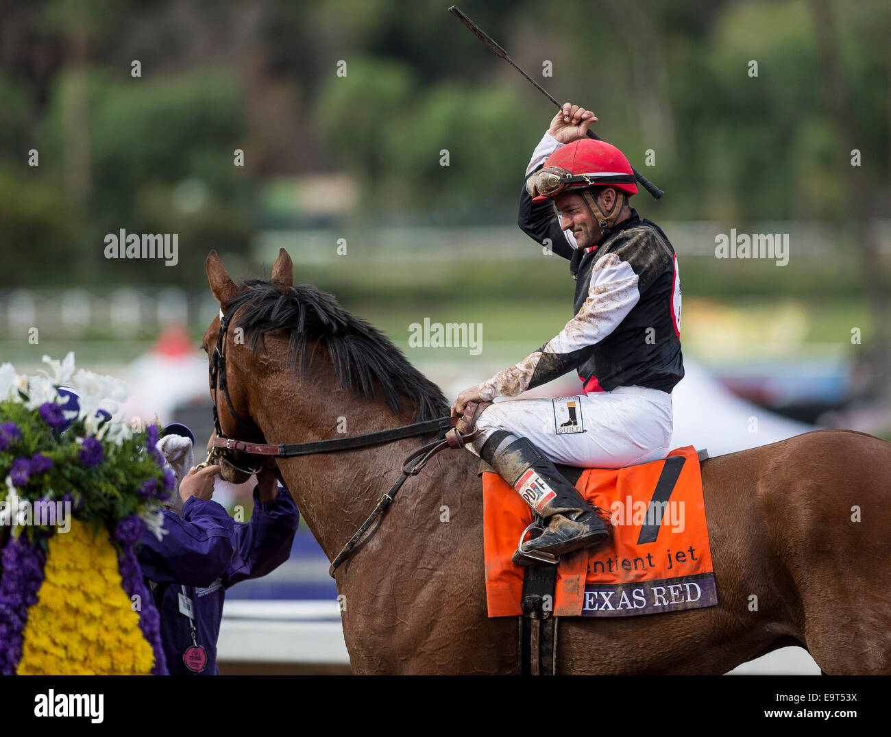 Arcadia, CA, USA. 1st Nov, 2014. November 1, 2014: Texas Red, ridden by Kent Desormeaux and trained by J. Desormeaux, - Stock Image