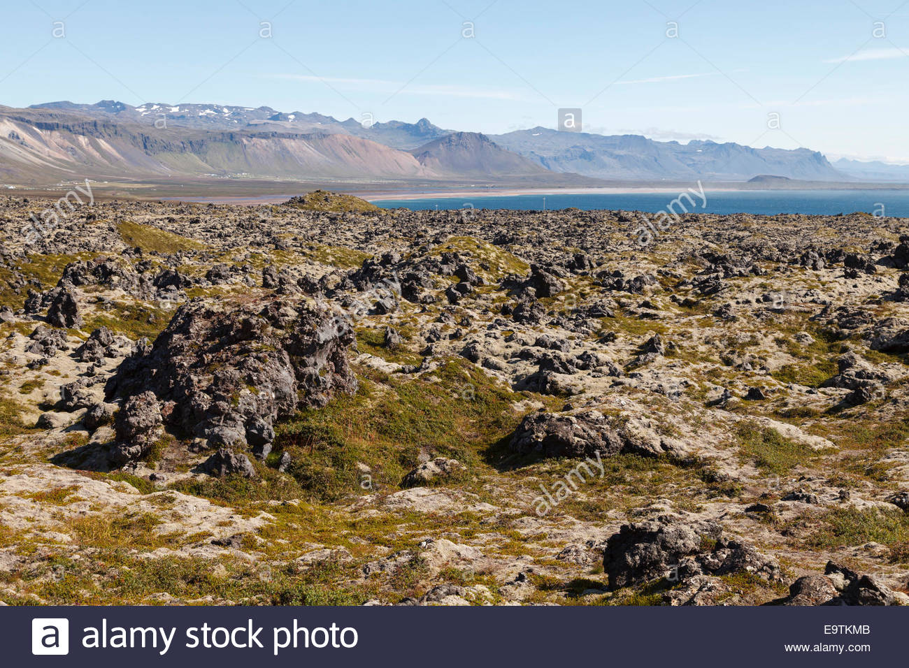 Lava field, Snæfellsnes Peninsula, Iceland Stock Photo