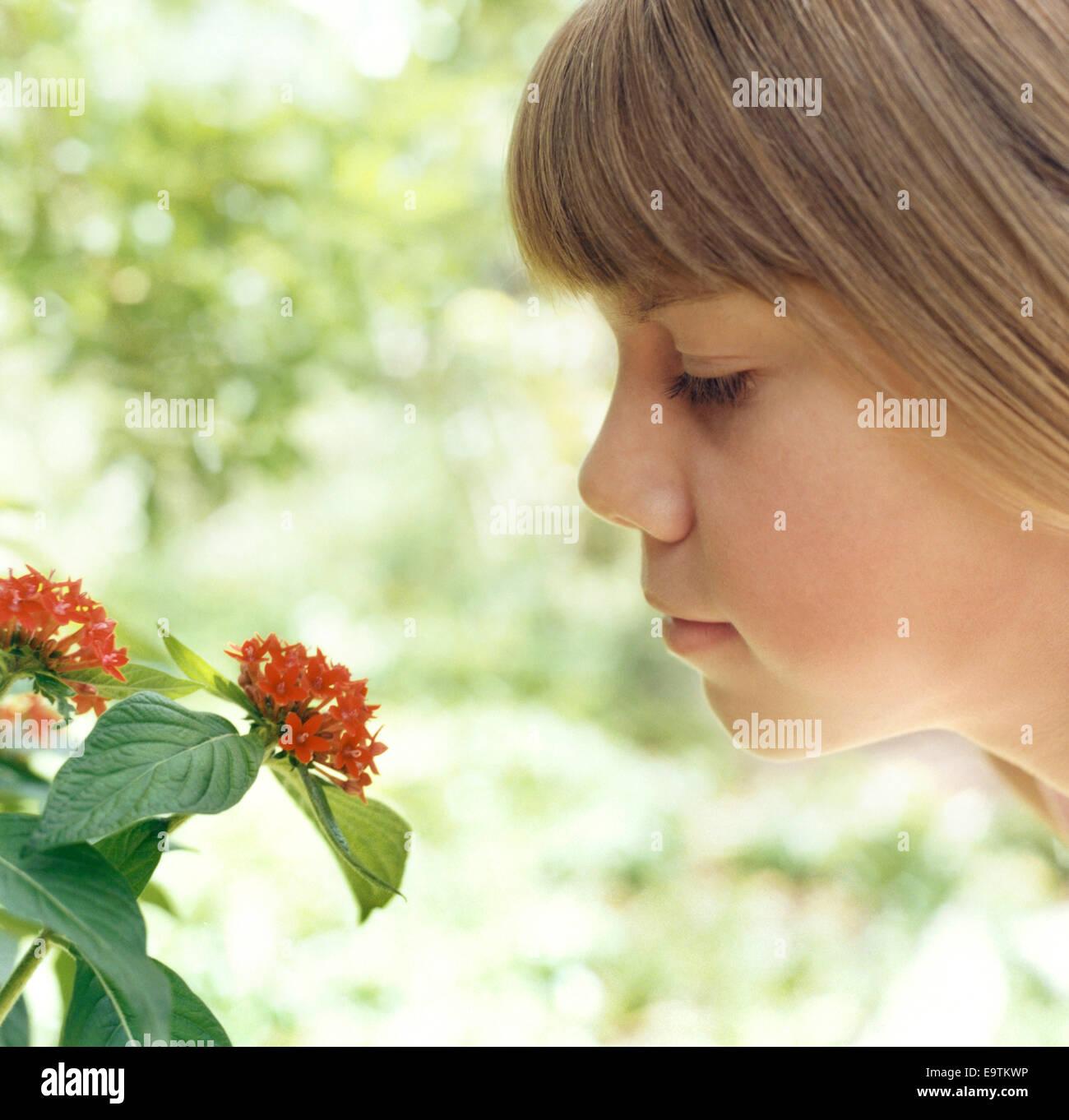 Girl Smelling Flower - Stock Image