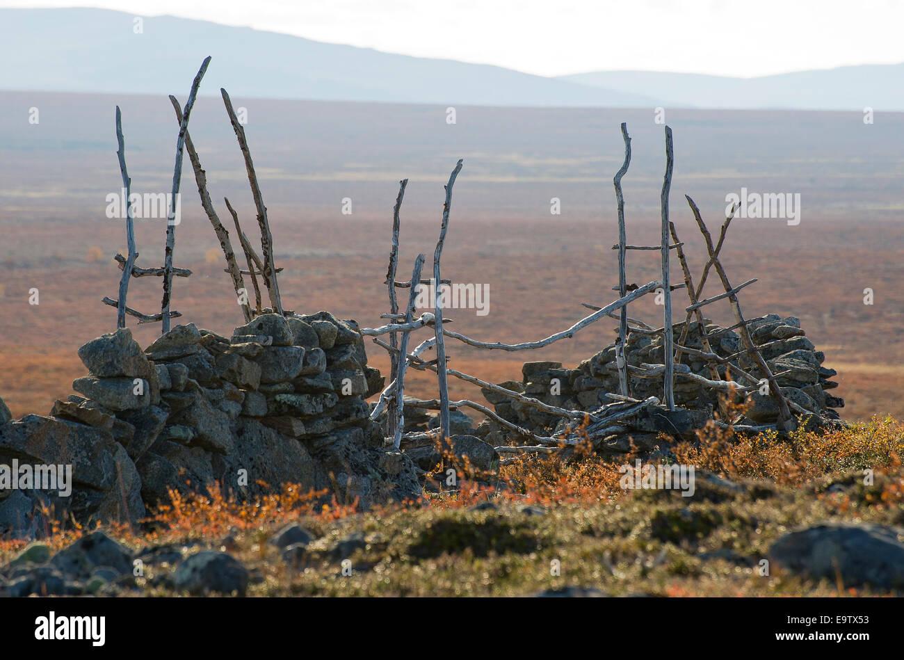 Gate of old Erttetvarri reindeer fence Stock Photo