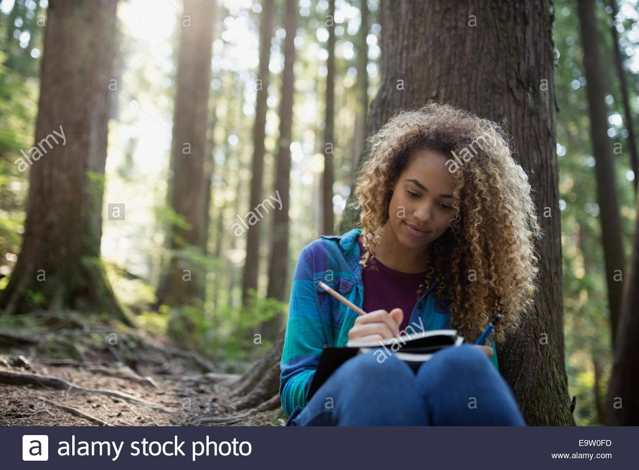 Woman writing in journal against tree in woods - Stock Image