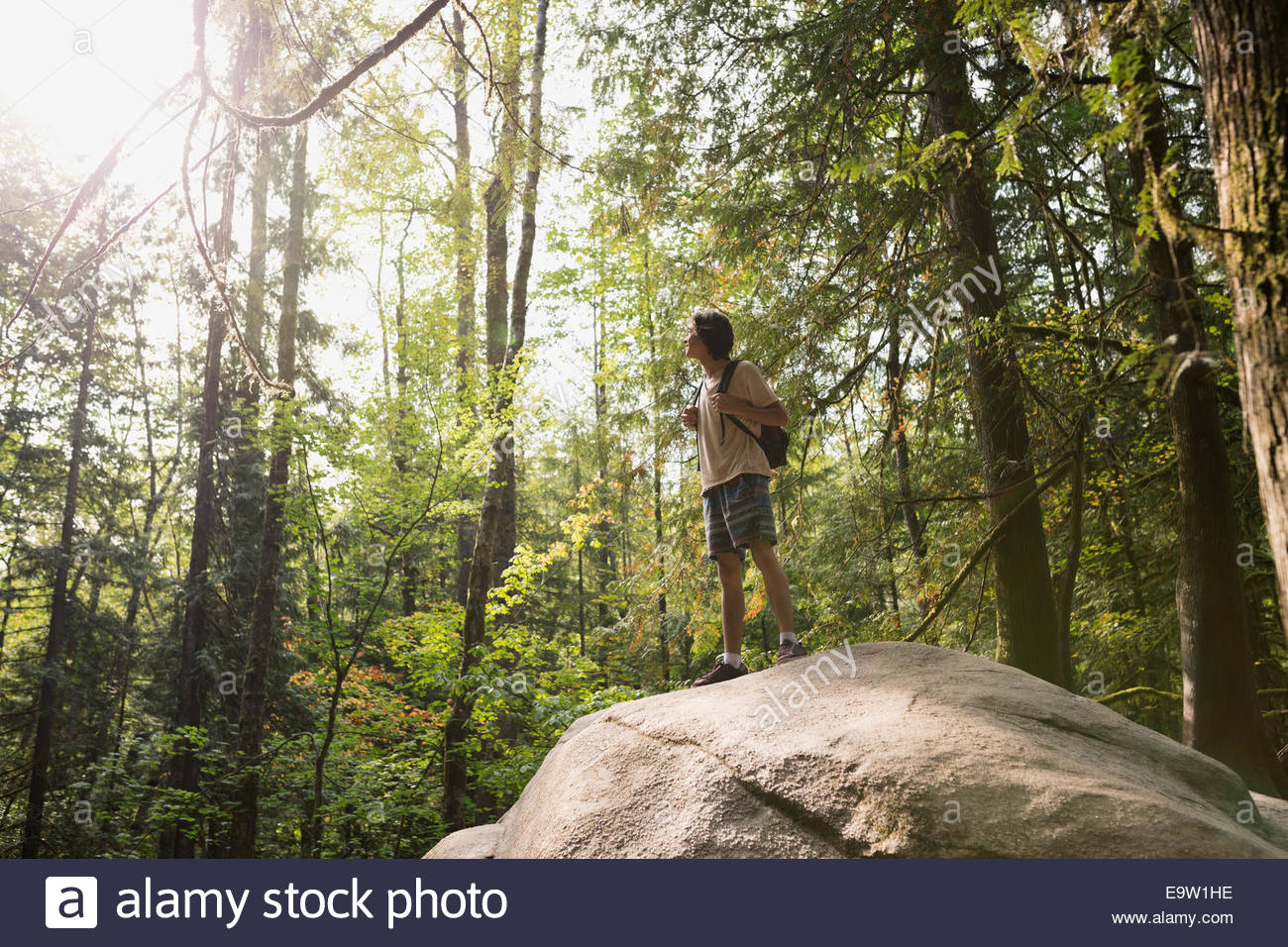 Teenage boy on rock in sunny woods - Stock Image