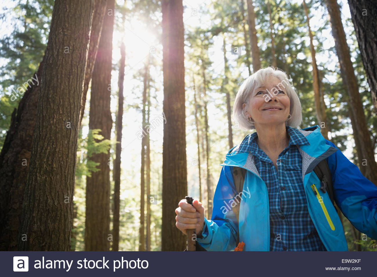 Smiling senior woman hiking below trees in woods - Stock Image