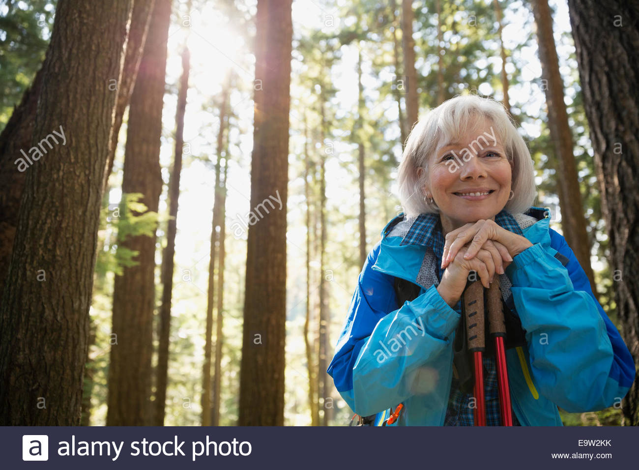 Portrait of smiling senior woman hiking in woods - Stock Image