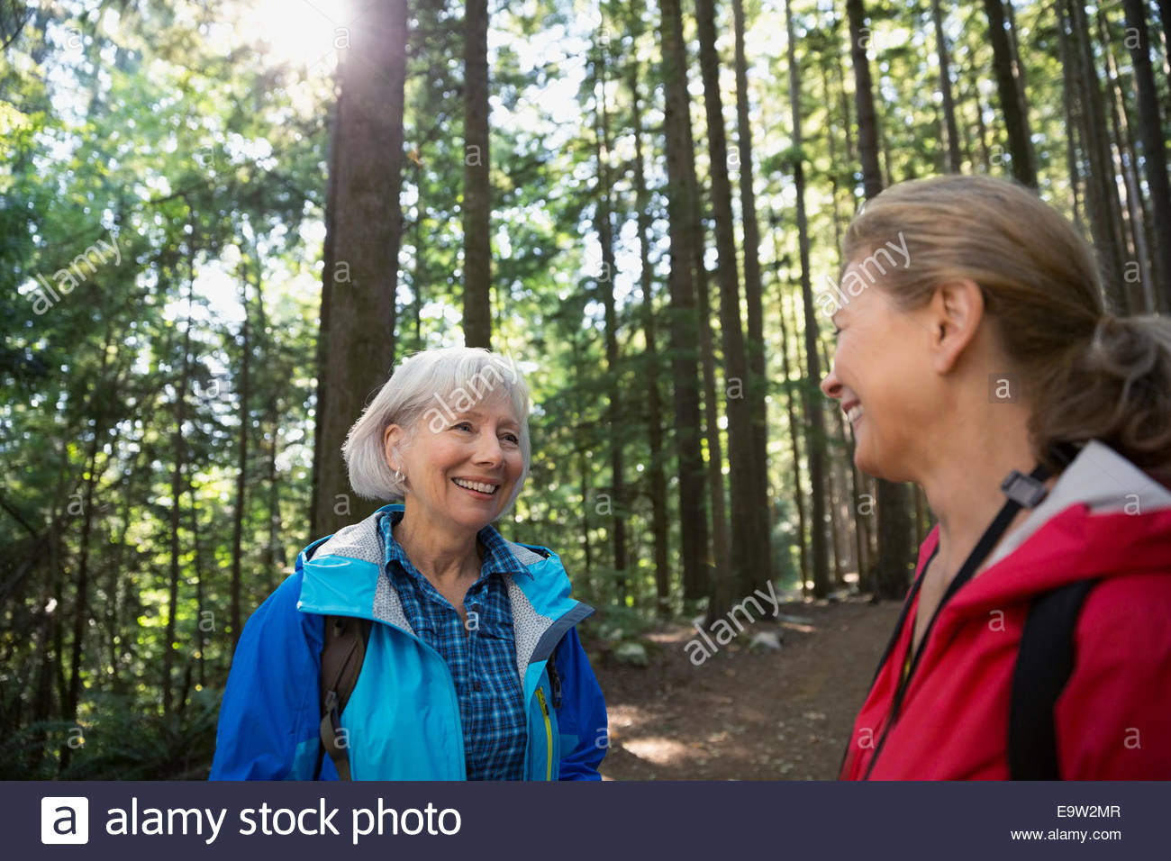 Women talking in sunny woods - Stock Image