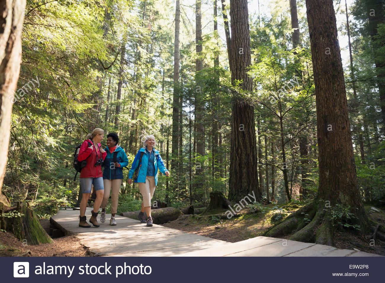 Women hiking on footbridge below trees in woods - Stock Image