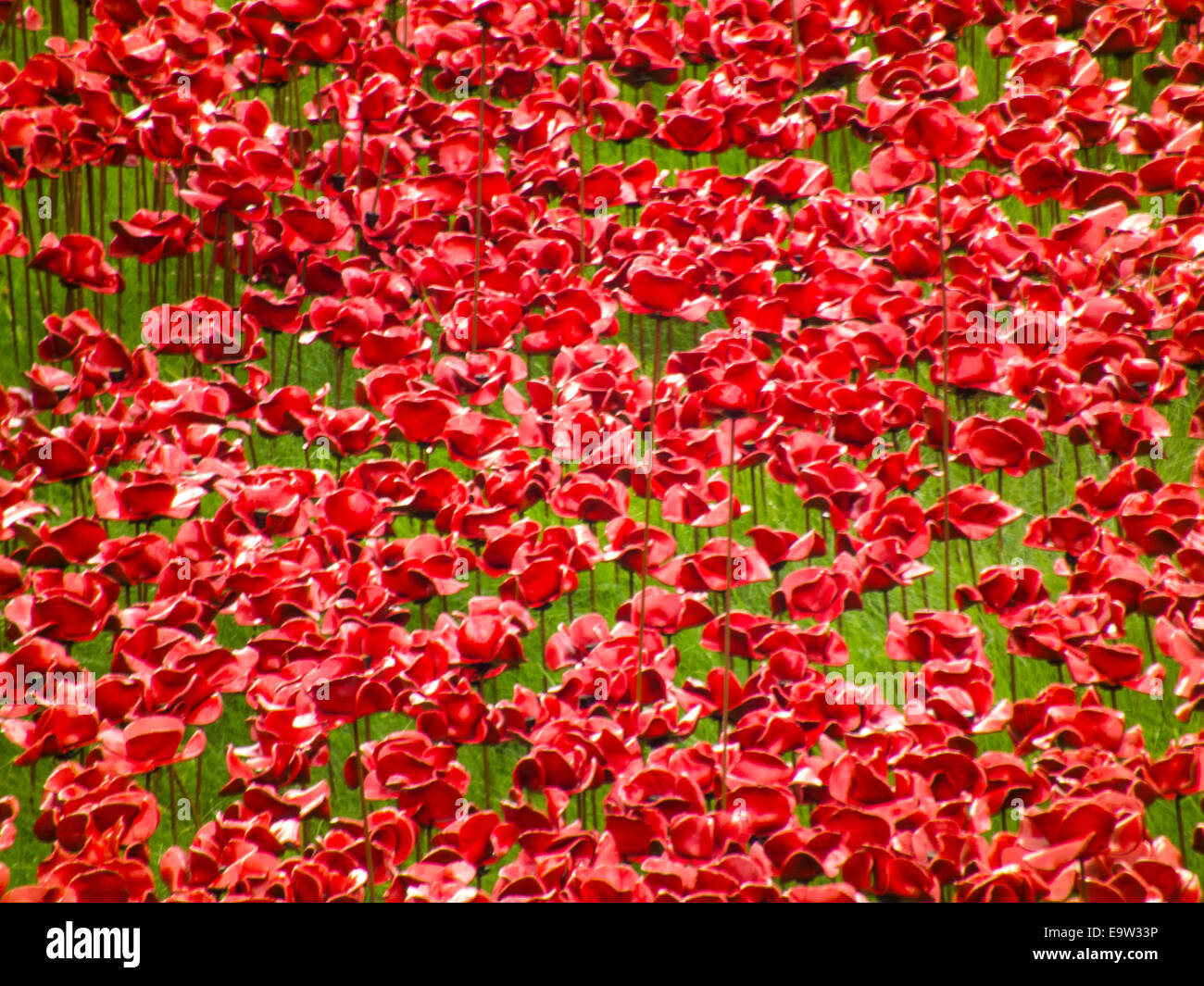 Blood swept lands and seas of red. The poppies at the Tower of London. Very poignant  reminder of our 1st world Stock Photo