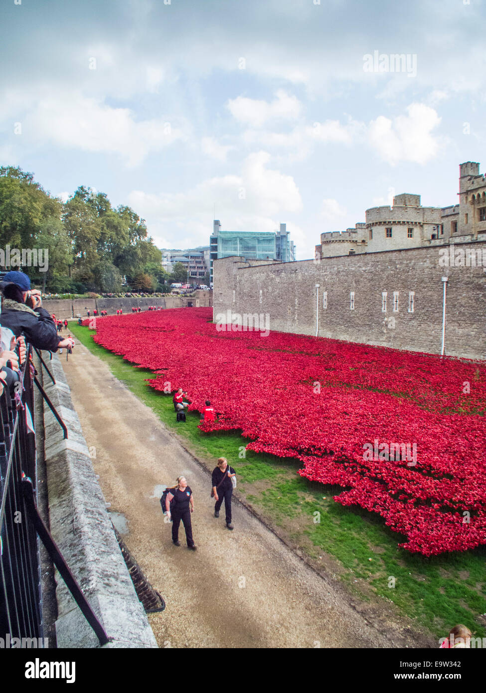 Blood swept lands and seas of red. The poppies at the Tower of London. Very poignant  reminder of our 1st world - Stock Image