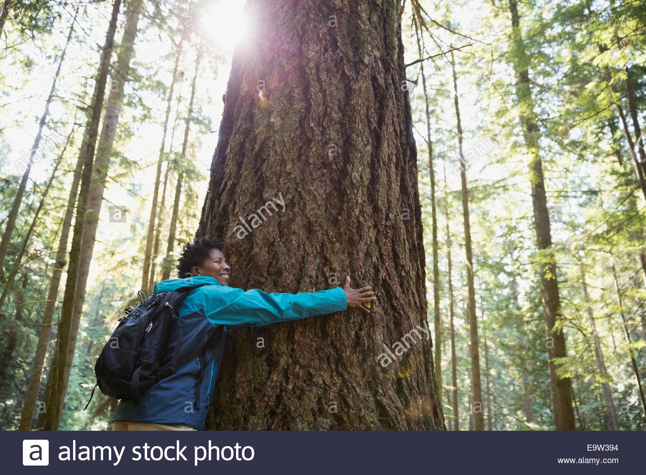Woman hugging tree in sunny woods - Stock Image