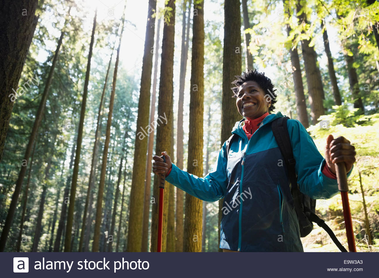 Smiling woman hiking below trees in sunny woods - Stock Image