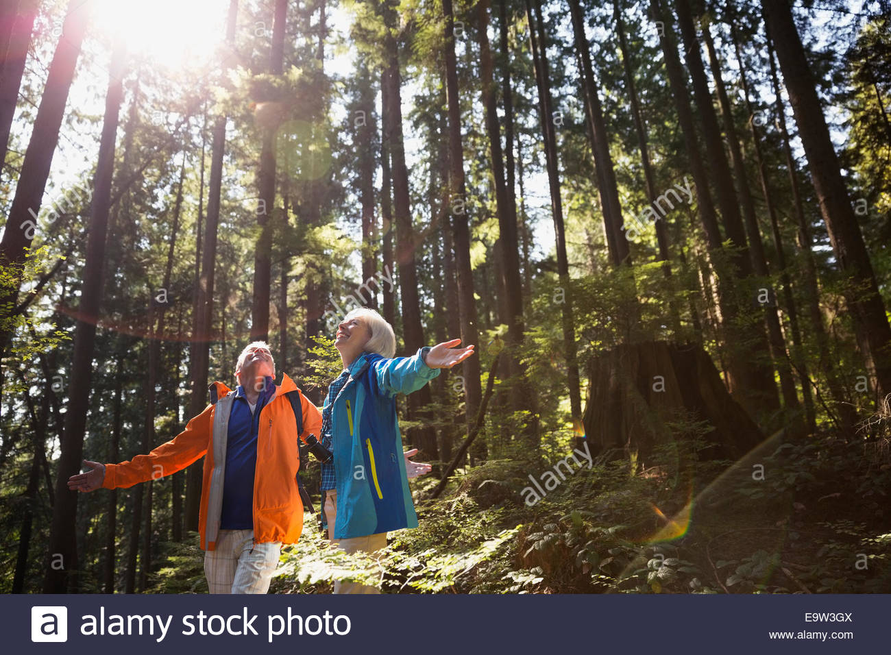Senior couple with arms outstretched in sunny woods - Stock Image