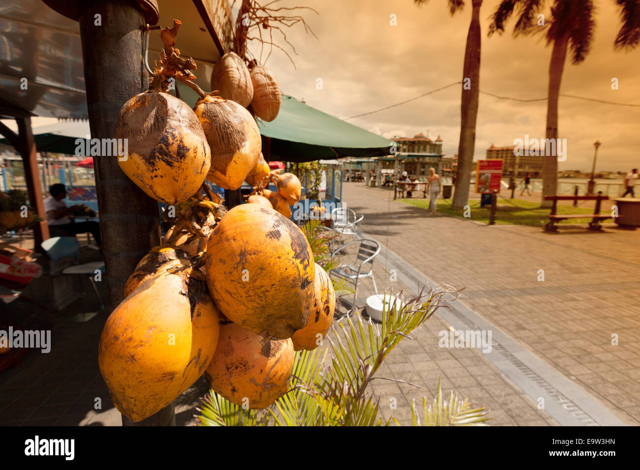 Coconuts for sale for drink, Port Louis, Mauritius Stock Photo