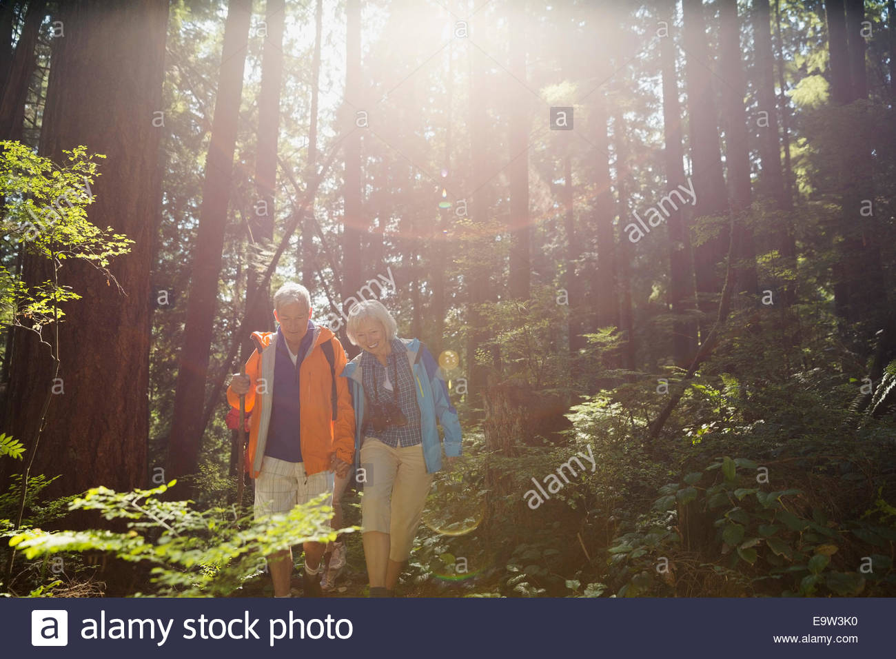 Senior couple hiking in sunny woods - Stock Image